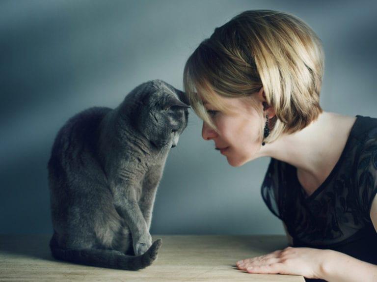 скільки живуть коти